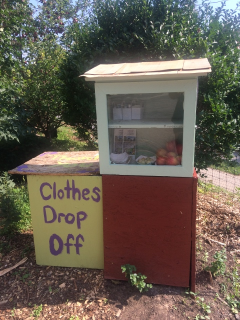 Grow Green's Blessing Box Photo 1