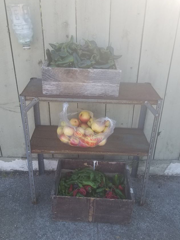 Tiny Free Farm Stand Photo 2