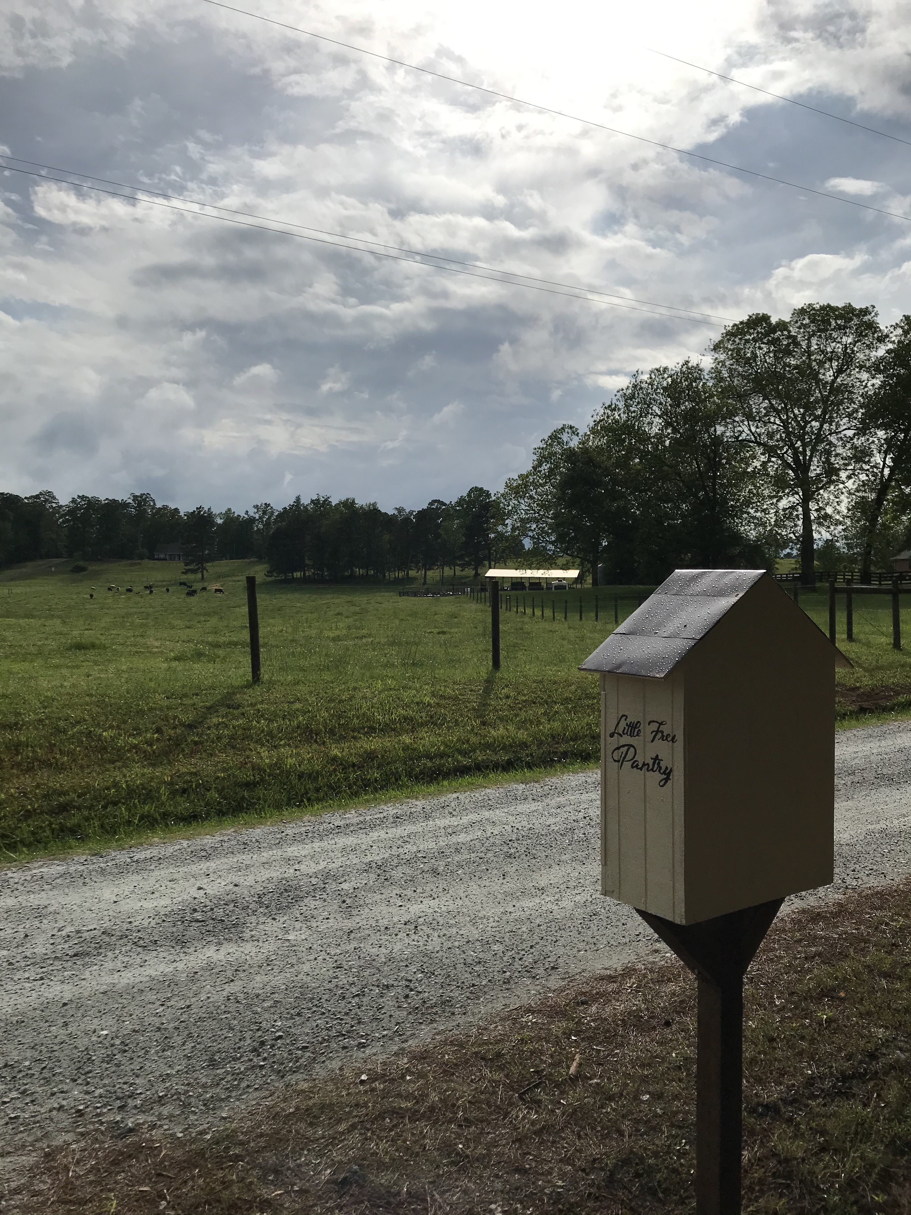 Piney Woods Little Free Pantry Photo 2