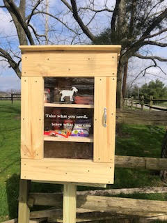 Catalyst Farm's Little Free Pantry Photo 1