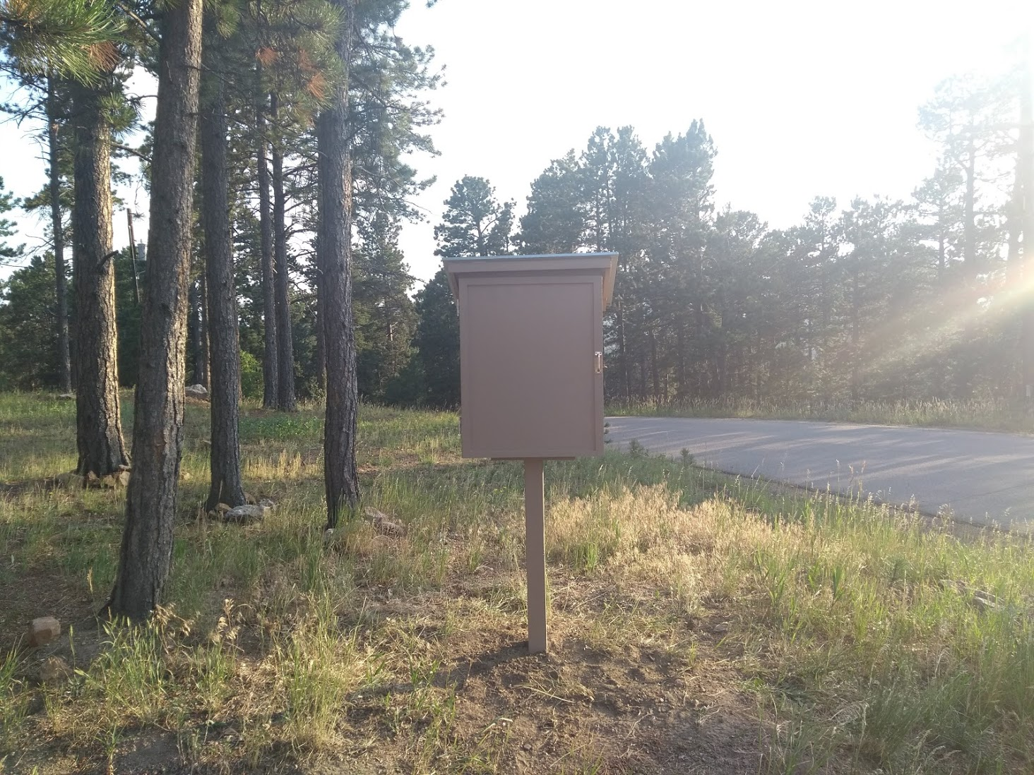 Conifer Blessing Box Photo 1